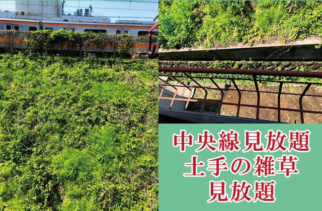 新宿電車が見える店